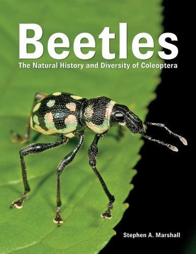 9780228100690: Beetles: The Natural History and Diversity of Coleoptera