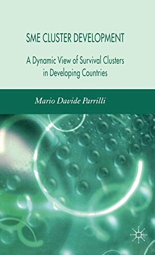 9780230007970: SME Cluster Development: A Dynamic View of Survival Clusters in Developing Countries