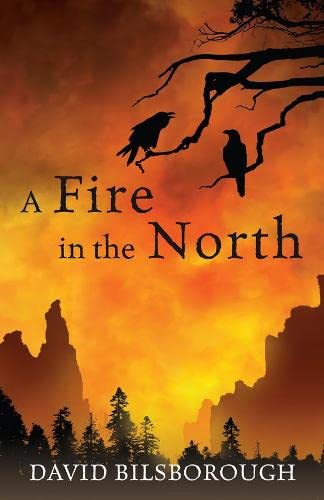 9780230014510: A Fire in the North: Annals of Lindormyn 2