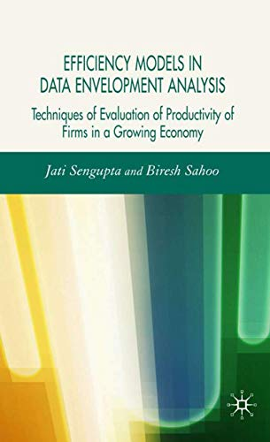 9780230018860: Efficiency Models in Data Envelopment Analysis: Techniques of Evaluation of Productivity of Firms in a Growing Economy