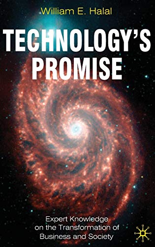 Technology's Promise: Expert Knowledge on the Transformation of Business and Society: Expert ...