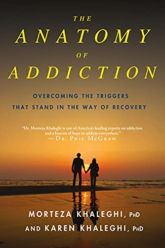 9780230107090: The Anatomy of Addiction: Overcoming the Triggers That Stand in the Way of Recovery