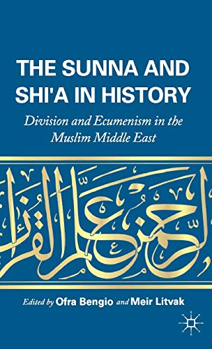 9780230120921: The Sunna and Shi'a in History: Division and Ecumenism in the Muslim Middle East