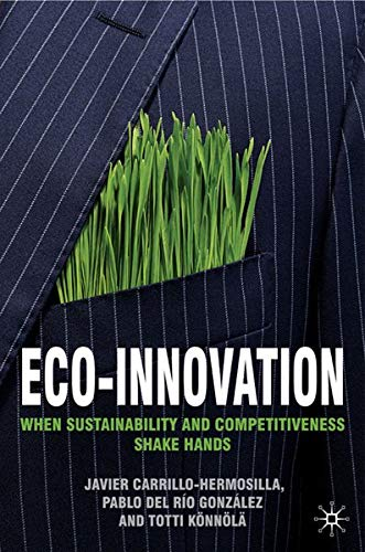 9780230202061: Eco-Innovation: When Sustainability and Competitiveness Shake Hands