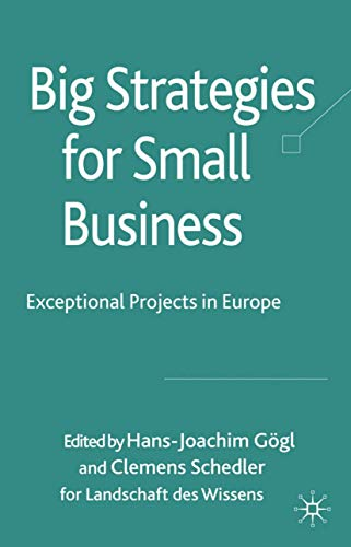 9780230223318: Big Strategies for Small Business: Exceptional Projects in Europe