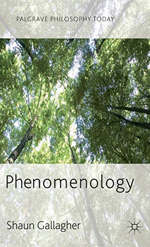 9780230272484: Phenomenology (Palgrave Philosophy Today)