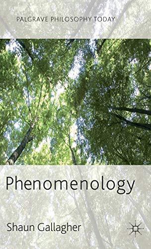 9780230272484: Phenomenology (Palgrave Philosophy Today)