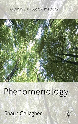 9780230272491: Phenomenology (Palgrave Philosophy Today)