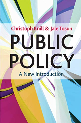 9780230278387: Public Policy: A New Introduction (Textbooks in Policy Studies)