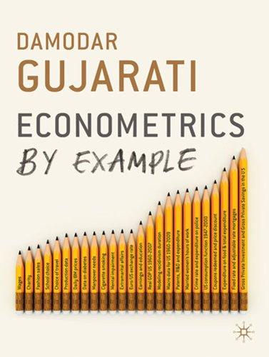 9780230290396: Econometrics by Example
