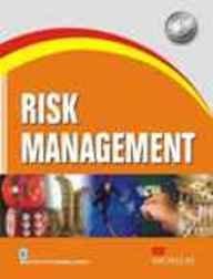 9780230331983: Risk Management