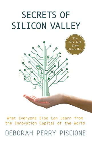 9780230342118: Secrets of Silicon Valley: What Everyone Else Can Learn from the Innovation Capital of the World