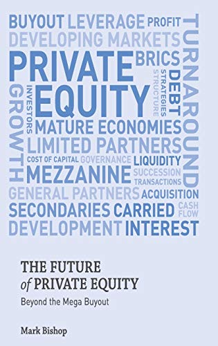 9780230354937: The Future of Private Equity: Beyond the Mega Buyout