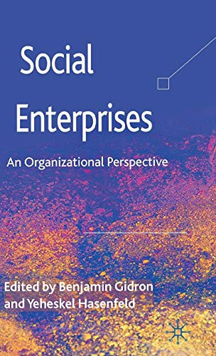 9780230358799: Social Enterprises: An Organizational Perspective