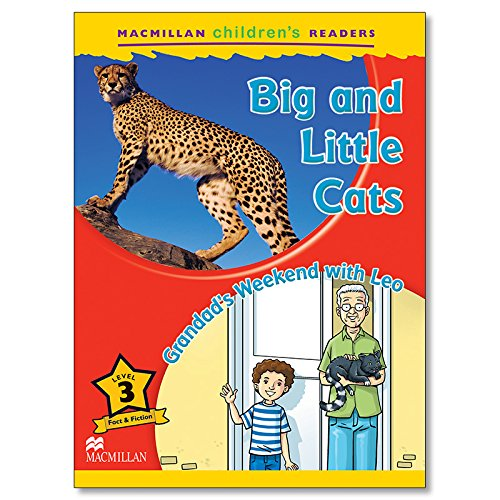 9780230469211: Macmillan Children's Readers Big and Little Cats Level 3