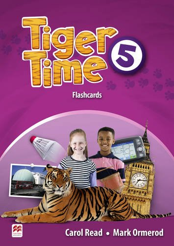 9780230483804: Tiger Time Level 5 Flashcards
