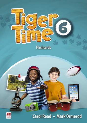9780230483859: Tiger Time Level 6 Flashcards