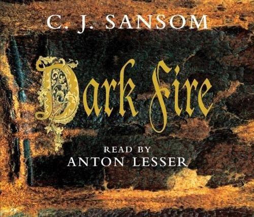 9780230529137: Dark Fire