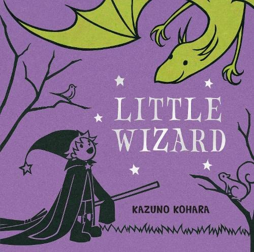 9780230712317: Little Wizard