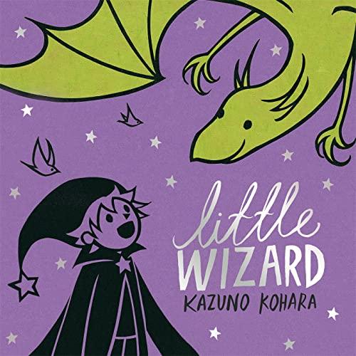 9780230736085: Little Wizard