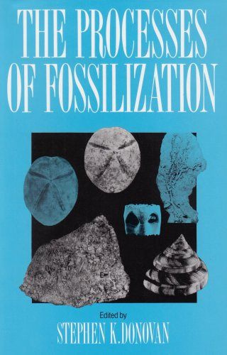 9780231076746: The Processes of Fossilization