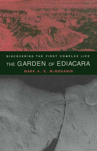 9780231105590: The Garden of Ediacara: Discovering the First Complex Life