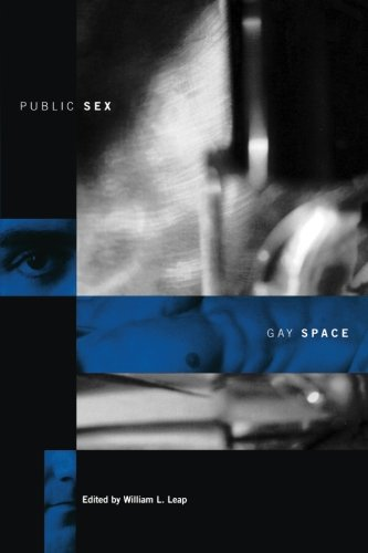 9780231106917: Public Sex/Gay Space (Between Men-Between Women: Lesbian and Gay Studies)
