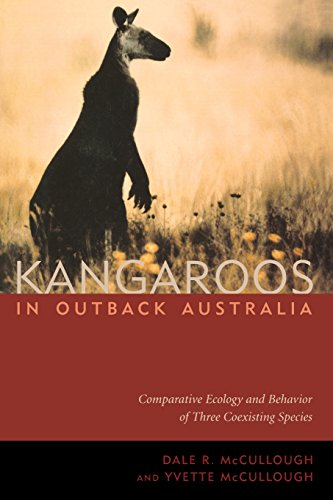 Kangaroos in Outback Australia: Dale R. McCullough,