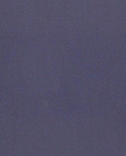 9780231123662: The Devil's Cloth