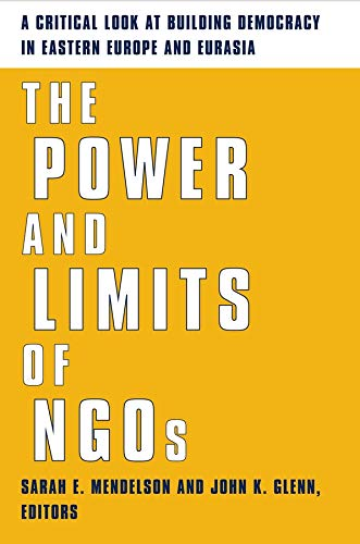 9780231124911: The Power and Limits of NGOs
