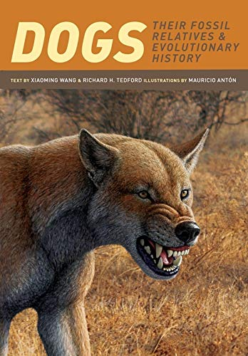 9780231135290: Dogs: Their Fossil Relatives and Evolutionary History
