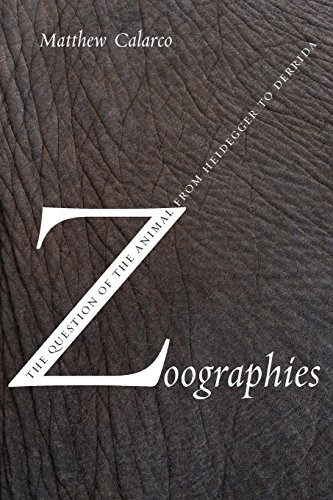 9780231140232: Zoographies: The Question of the Animal from Heidegger to Derrida