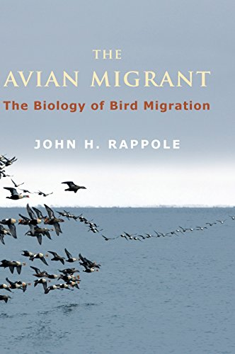 The Avian Migrant (Hardcover): John H. Rappole
