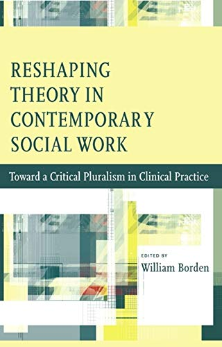 9780231147019: Reshaping Theory in Contemporary Social Work: Toward a Critical Pluralism in Clinical Practice