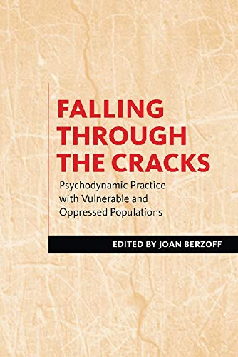 9780231151085: Falling Through the Cracks: Psychodynamic Practice with Vulnerable and Oppressed Populations