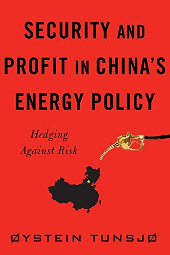 9780231165082: Security and Profit in China's Energy Policy: Hedging Against Risk (Contemporary Asia in the World)