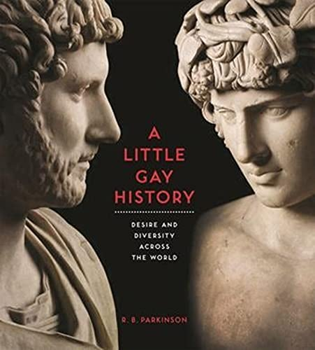 9780231166638: A Little Gay History: Desire and Diversity Across the World