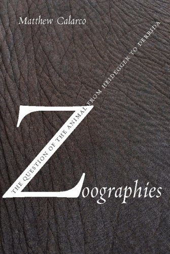 9780231511575: Zoographies: The Question of the Animal from Heidegger to Derrida