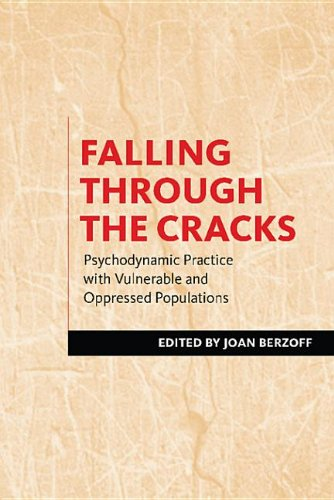 9780231521819: Falling Through the Cracks: Psychodynamic Practice with Vulnerable and Oppressed Populations