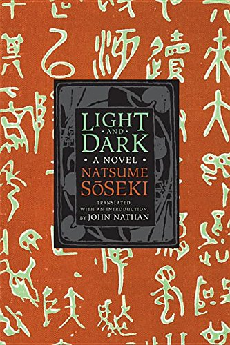 9780231536189: Light and Dark: A Novel