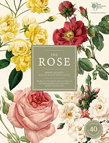"""9780233004907: The Rose: The History of the World's Favourite Flower in 40 Captivating Roses with Classic Texts and Rare Beautiful Prints""""In Slipcover"""""""