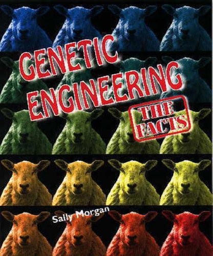 9780237517397: Genetic Engineering (Moral Dilemmas)