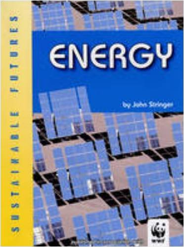 9780237539207: Energy (Sustainable Futures)