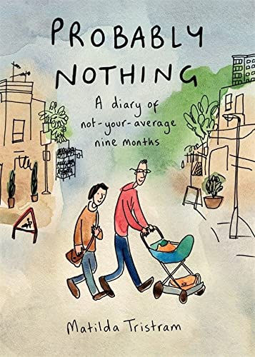 9780241004159: Probably Nothing: A diary of not-your-average nine months