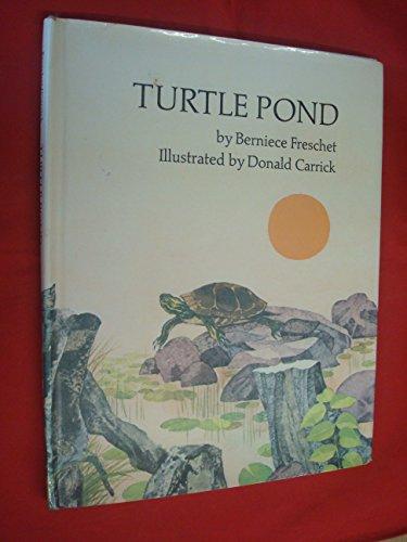 9780241020579: Turtle Pond