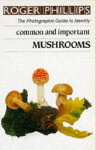 9780241117569: Mushrooms: The Photographic Guide to Identify Common & Important Mushrooms (The photographic guide to identity)