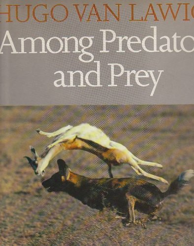 9780241117927: Among Predators and Prey (Elmtree Africana)