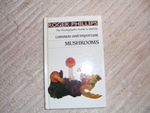 9780241118115: Mushrooms