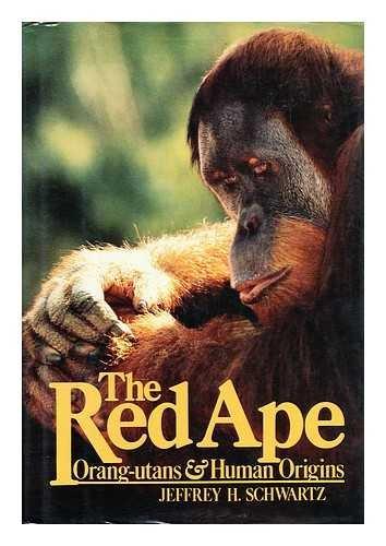 9780241118504: Red Ape Orangutans and Human Origins