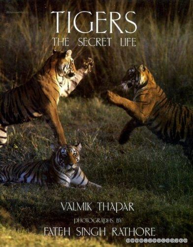 9780241127223: Tigers: The Secret Life